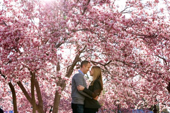 springtime-dc-wedding-engagement-session-deb-lindsey-photography-lush-blossoms-550x366