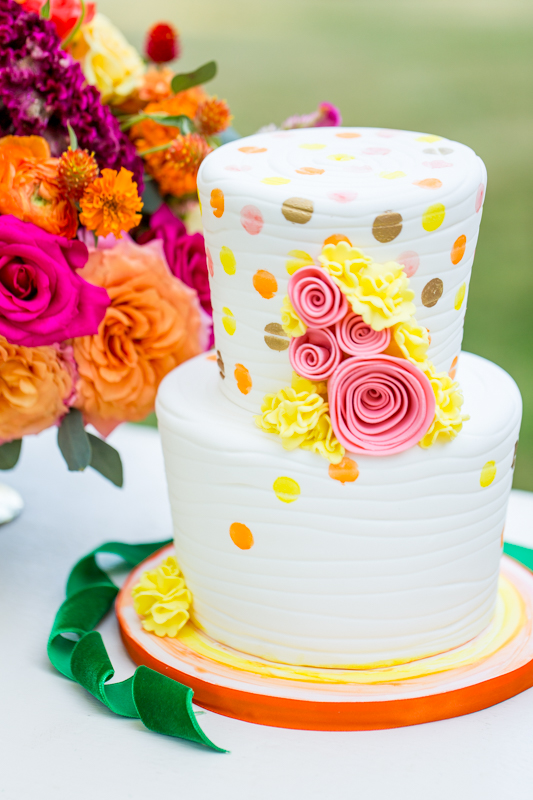 unique-wedding-cakes-virginia-wedding-Shannon-Graham-Photography